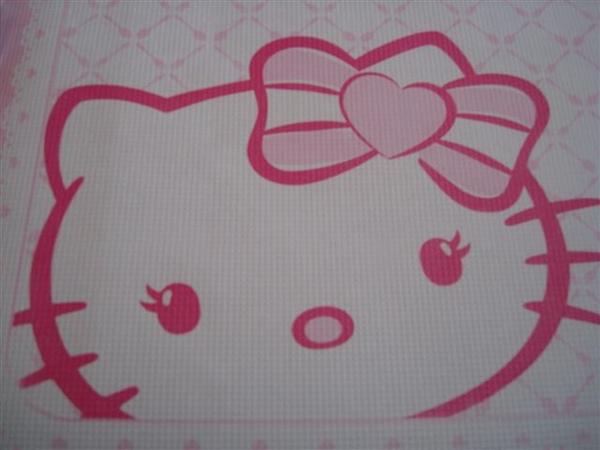 Kitty一景6_桌巾紙.JPG