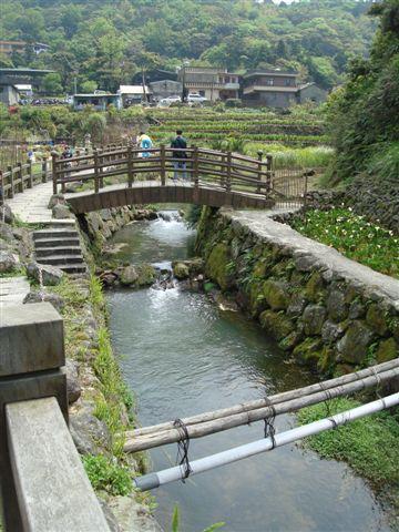 竹子湖一景2.JPG