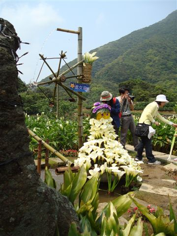 竹子湖一景10.JPG