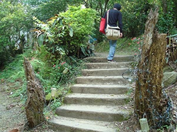 雙魚花園一景5_階梯.JPG