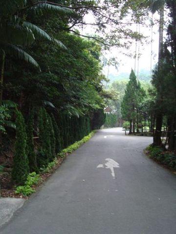 慈湖一景7.JPG