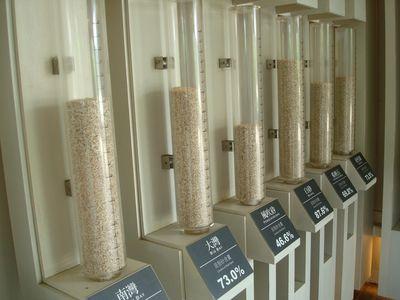 砂島貝殼砂展示館3.JPG