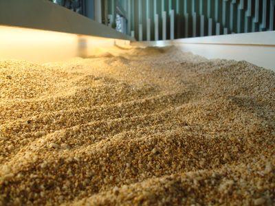 砂島貝殼砂展示館9_貝殼砂.JPG
