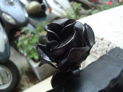 古典玫瑰園7_門上的玫瑰.JPG