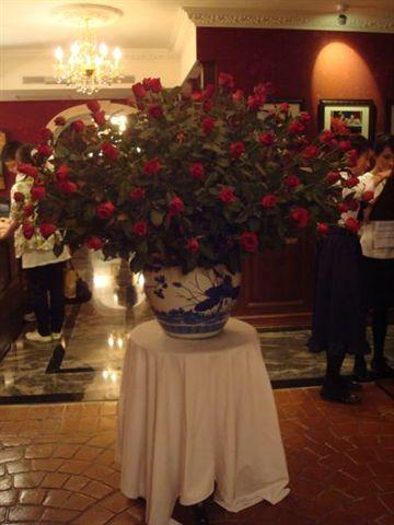 古典玫瑰園16.JPG