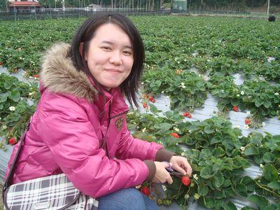 是我3_採草莓囉.JPG