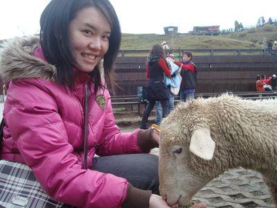是我43_餵羊中.JPG