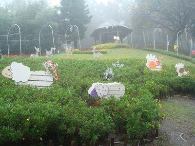 清境DAY2-20_小瑞士花園.JPG