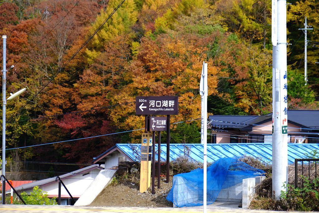 DSCF4632.jpg