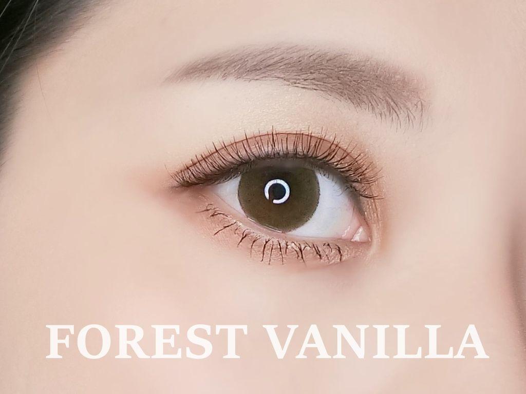 FOREST VANILLA.JPG
