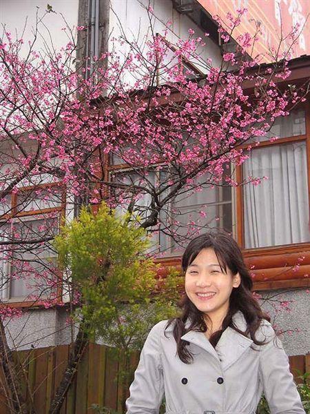 烏來櫻花祭 021.jpg