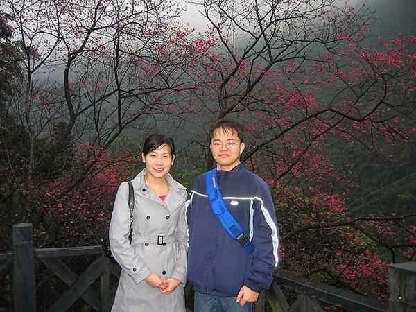 烏來櫻花祭 038.jpg