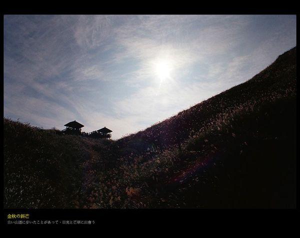 草嶺3.jpg