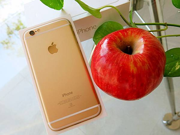 圖1 買一顆漂亮的紅蘋果和我的土豪金iPhone 6合照