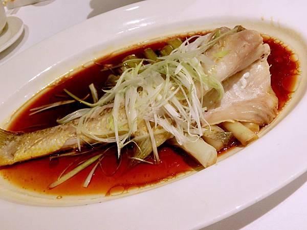 圖19 富臨的~清蒸野生大黃魚