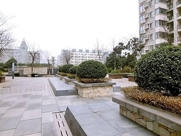 圖25 我南京住家的社區花園