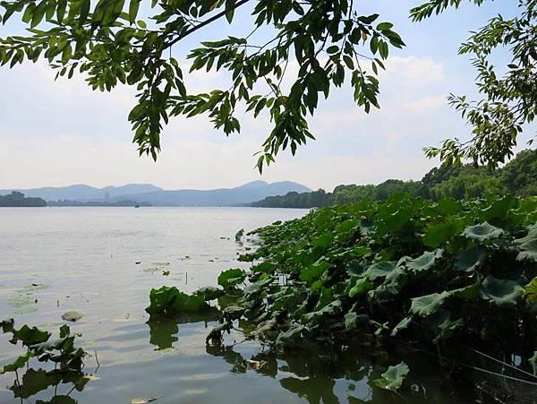 圖2 杭州西湖一景