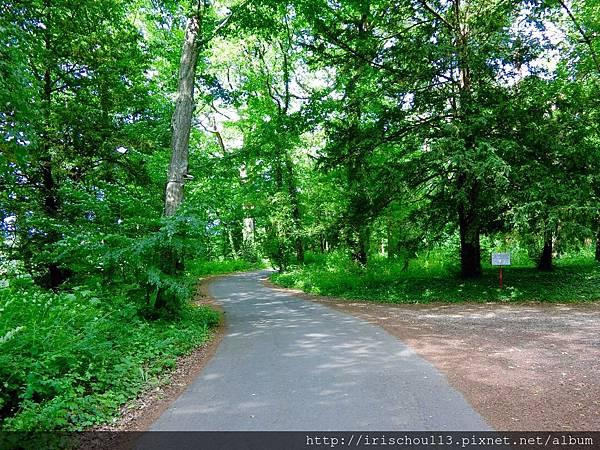 圖22 樹林路之一.jpg
