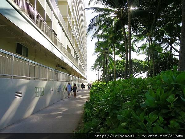 圖23 來去川普酒店與威基基海灘的一段路.jpg