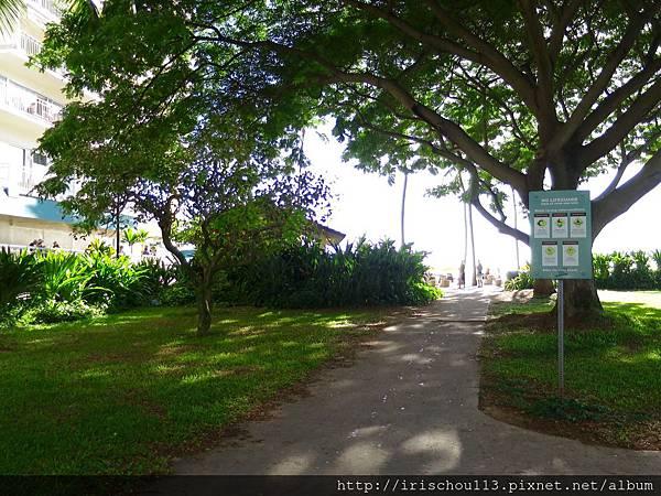 圖24 來去川普酒店與威基基海灘的一段路.jpg