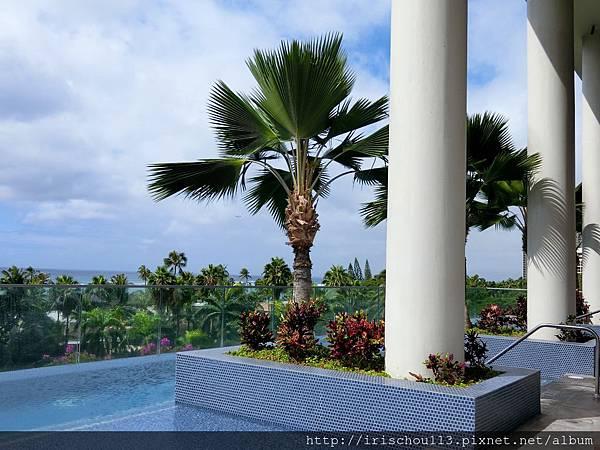 圖29 在酒店的游泳池也可見海灘風景.jpg