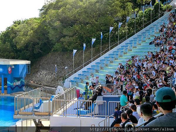 P31)海洋公園的海洋劇場座位區.jpg