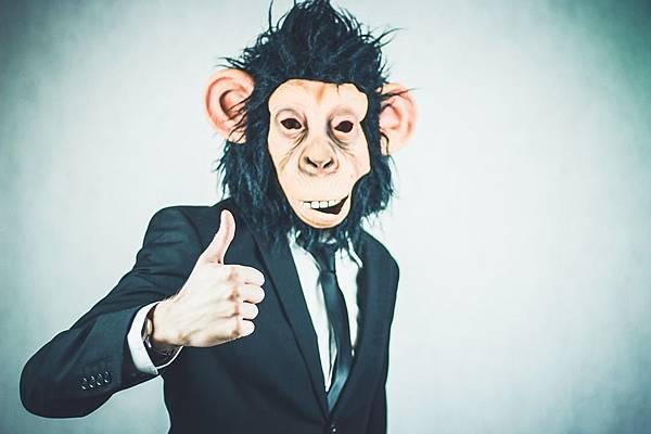 monkey-2710658_960_720.jpg