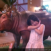 大廳迎賓犀牛-1.jpg