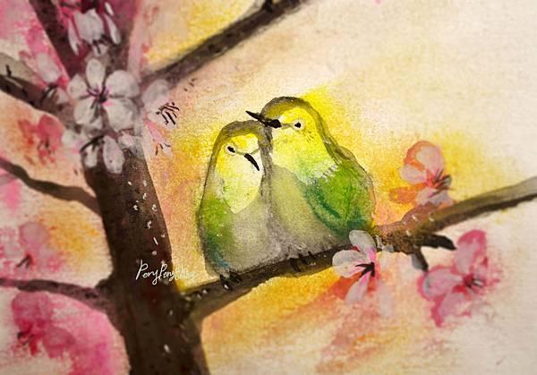 綠繡眼夫妻