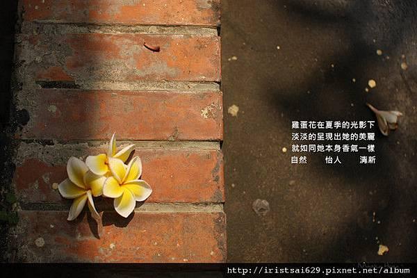 Miyako。小視野│【回顧】2010。小C。My Story│