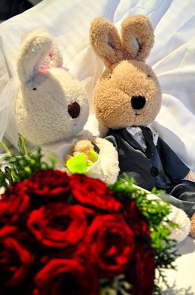 我的婚禮兔兔和紅玫瑰