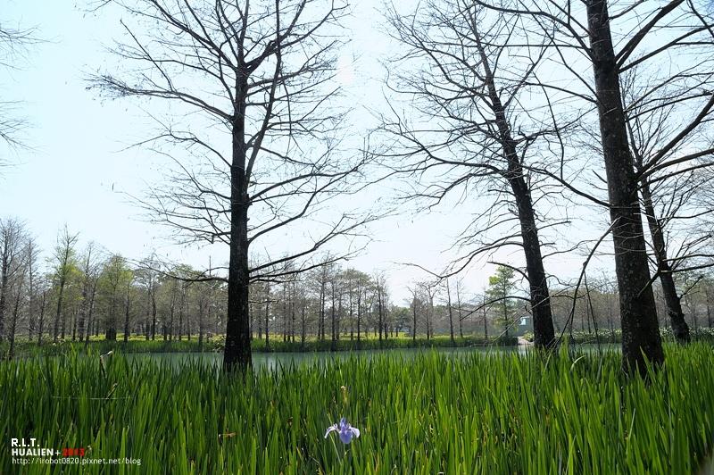 花蓮-雲山水 (43)