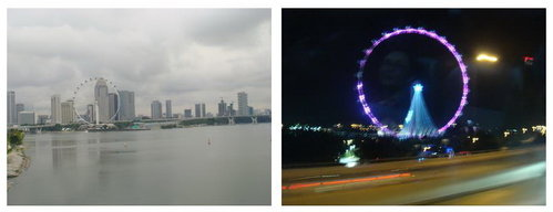 20121119-17.jpg