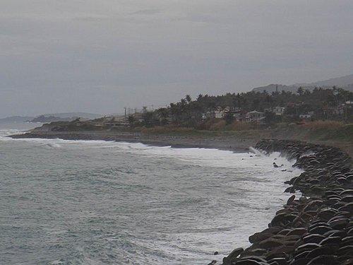 20110120-03.jpg