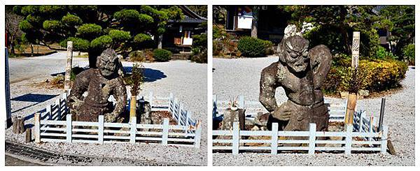 cats-20151104-01.jpg