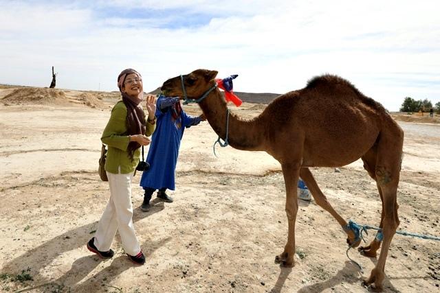 駱駝親親_171024_0027.jpg