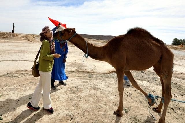 駱駝親親_171024_0031.jpg
