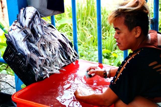 紅頭部落「海老人」的蘭嶼特色料理_180514_0004.jpg