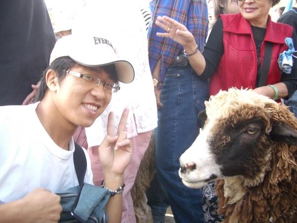 32羊的OS:這個阿桑是誰人