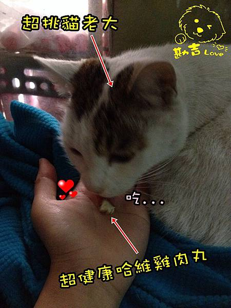S__39985168.jpg