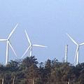 漁港沙灘的大風車.JPG