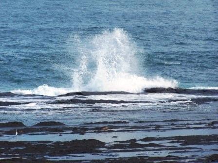美麗的東北角海岸線31.JPG
