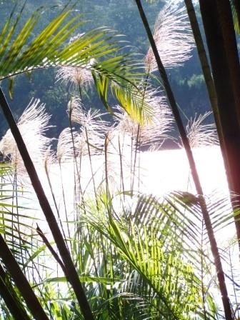 慈湖--蔣家紀念園區26.JPG