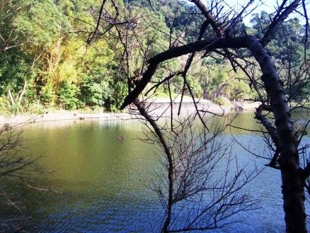 慈湖--蔣家紀念園區30.JPG