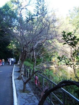 慈湖--蔣家紀念園區31.JPG
