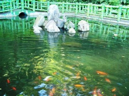 慈湖--蔣家紀念園區32.JPG