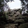 新山登山步道05.JPG