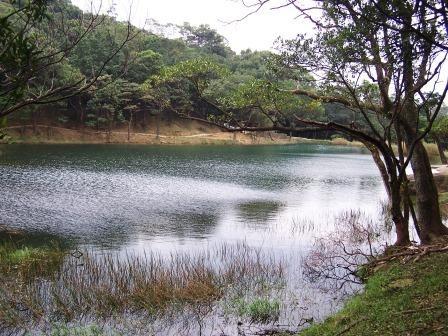 新山夢湖14.JPG