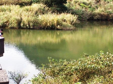 陽明山大屯山公園12.JPG
