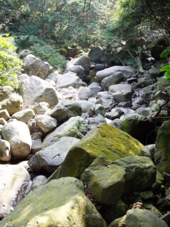 台北青山瀑布04.JPG